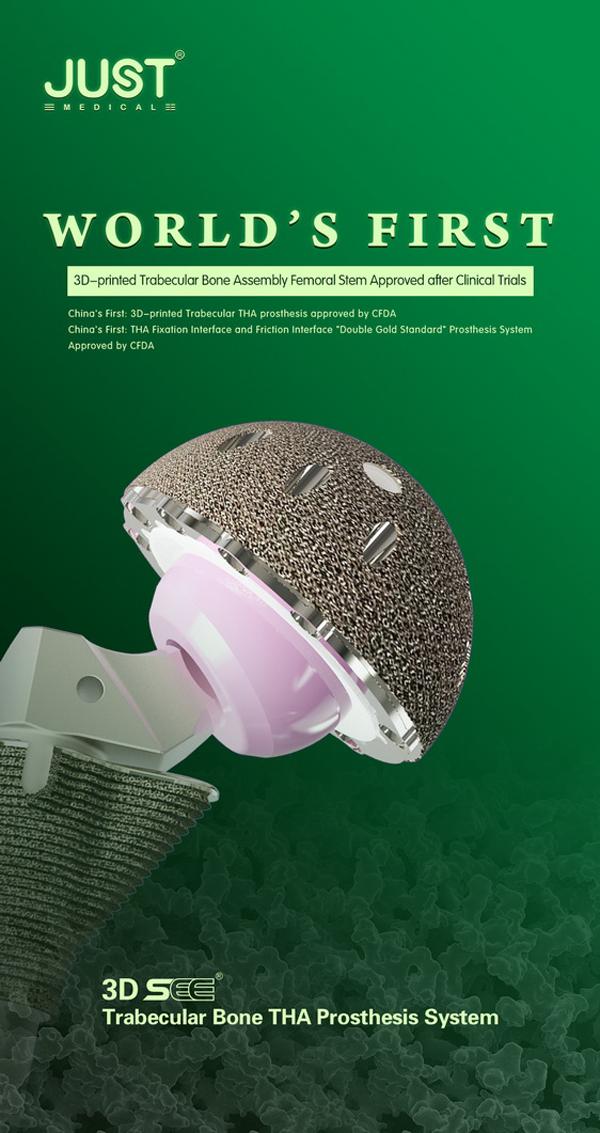 Hip Prosthesis Supplier